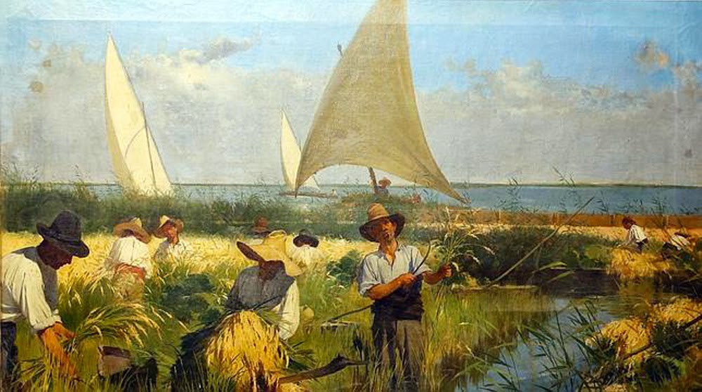 Antonio Fillol Granel  La recogida del arroz Albufera Valencia